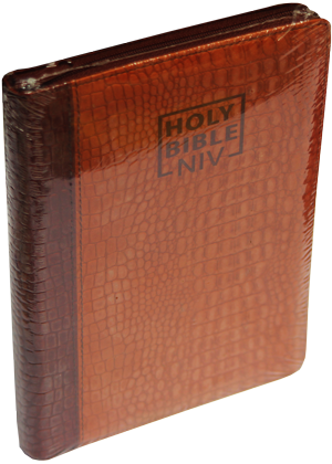Holy-Bible-New international version bordu avec onglet cover souple 12000