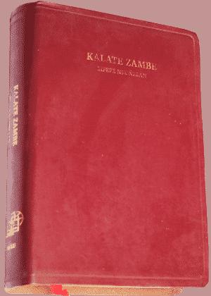 Kalate-Zambe-bulu bord doré lux10000-(5)