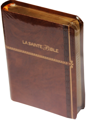 bible ls avec intro note de bas bord doré index S-B–6500-(2)