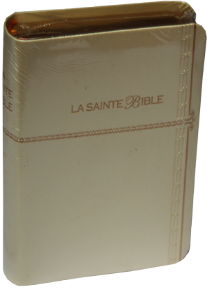 bible ls avec intro note de bas bord doré index S-B–6500